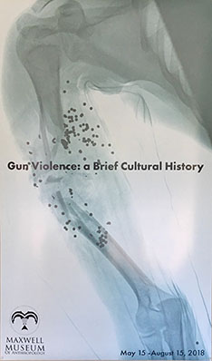 Gun Violence: a Brief Cultural History